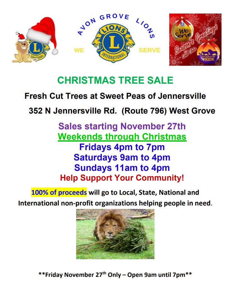 avon grove lions club Christmas Tree flyer